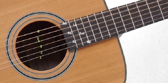 Học đàn Guitar nhưng chưa biết gì thì nên bắt đầu từ đâu ?