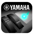YDP 143 YAMAHA