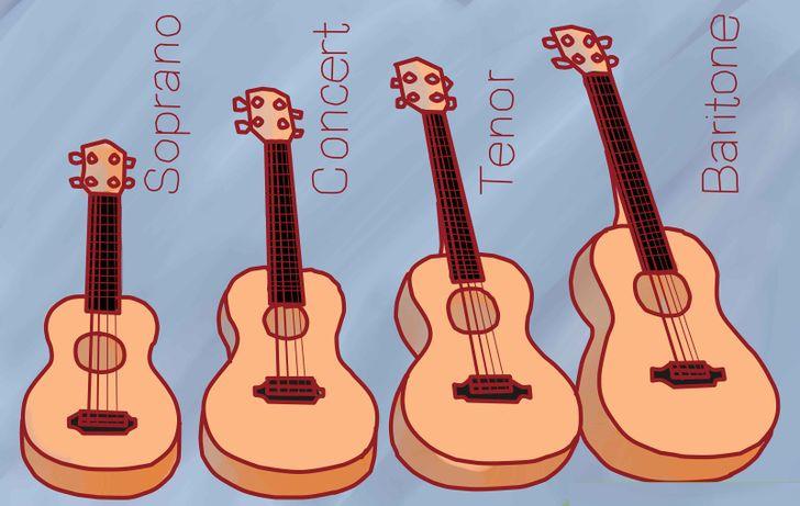 cac loai dan ukulele